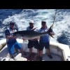 Cabo Tuna Tourney 2016   Facebook