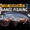 Okanagan Summer Kokanee | Fishing with Rod