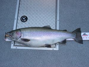 Kelowna Fishing Derby