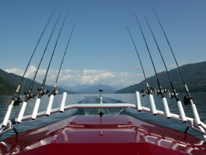 shimano rods and reels for guiding
