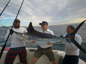 Marlin caught in Cabo San Lucas