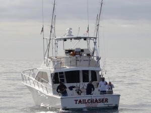 Cabo san lucas fishing charter
